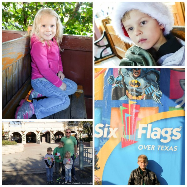 Six Flags Collage